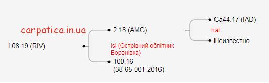 2019-11-01_12-58-14 (2)